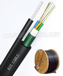 Cáp quang treo 4FO Singlemode Sacom