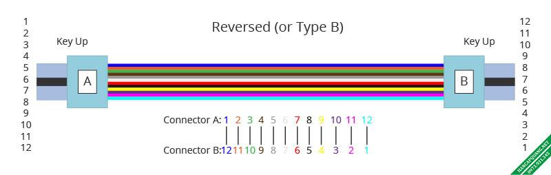 Hình 3: Cáp MTP-12 chuẩn B