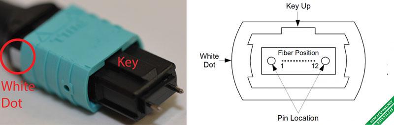 Hình 1: Đầu nối MTP / MPO.
